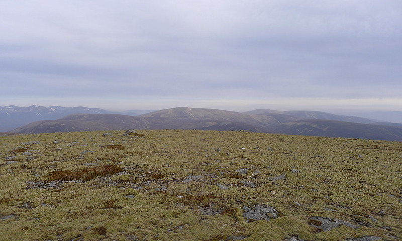 Ring of Tarf