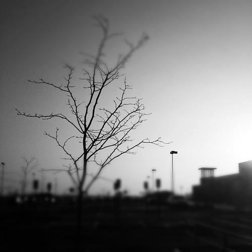 Silhouette / take 2