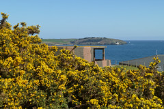 St Anthony Lighthouse and the Half Moon Battery. And a lot of gorse. Pendennis Point, Falmouth by Tim Green aka atoach