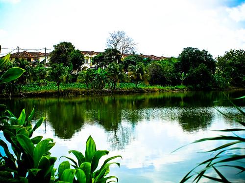 IMG_2205 Fish pond , 鱼池