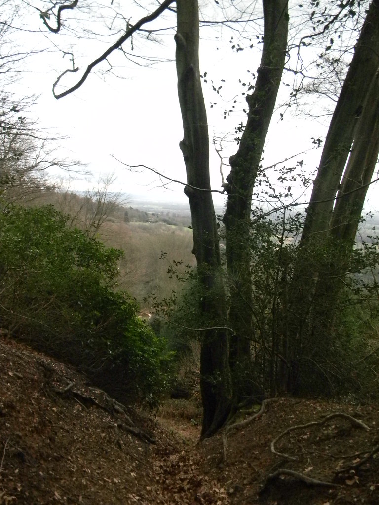 Steep climb (looking down) Holmwood to Gomshall