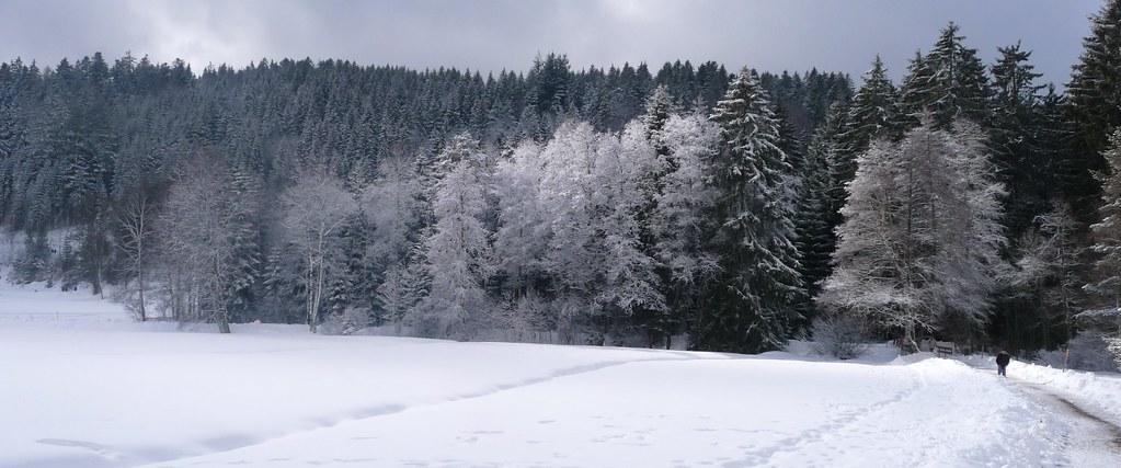 C'est encore l'hiver
