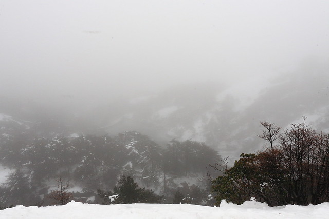 2012-01-28-09-53-01