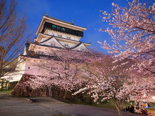 sunset castle japan panasonic 桜 日本 sakura fukuoka 福岡 kokura 小倉 714mm 天守 gx1 714mmf4 geo:lat=338842087324248 geo:lon=13087389581957405 02011212 pwpartlycloudy