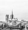 ~ Notre Dame de Paris ~