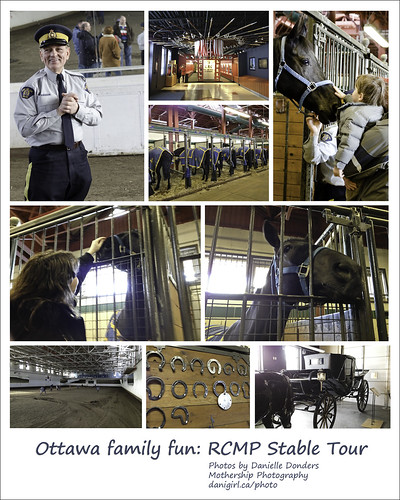 RCMP stables tour