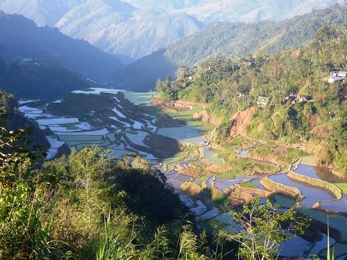 Luzon-Banaue (101)