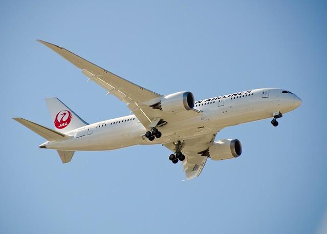 JAL 787-8 JA822J