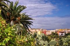 Valle Gran Rey - La Playa View