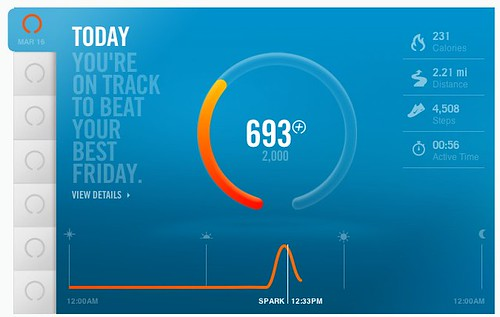 Nike+ FuelBand: 1st Jamaica Pond Walk #counts