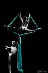 event, performing arts, aerialist, modern dance, concert dance, entertainment, dance, erotic dance, illustration, performance, acrobatics, performance art,