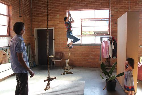 bird climbs the rope