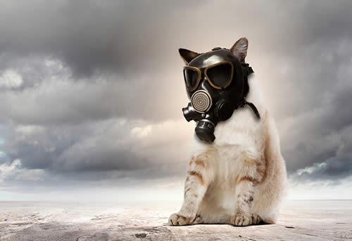 Найбрудніше повітря — в обід