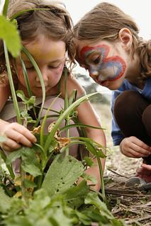 Children Explore Plants