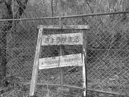 経ヶ丸グリーンパーク #12