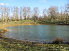 Millenium Pond 5/3