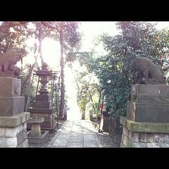 狛犬探訪 大森山王熊野神社 いい姿