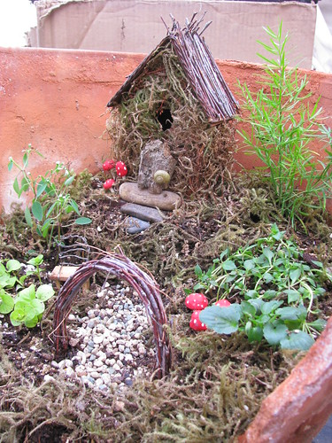 Fairy Garden Close Up