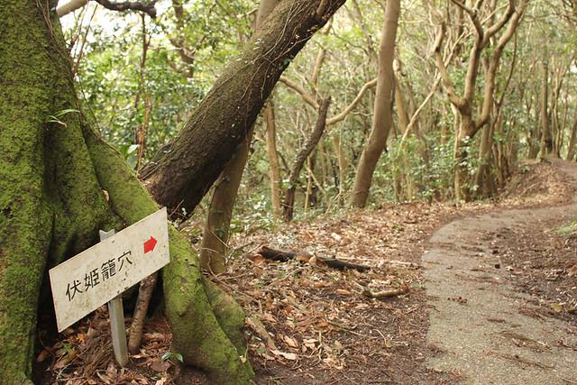 20120311_伊予ヶ岳_0077