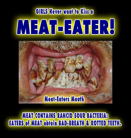 Meat Eaters Beef Animal Protein Rotten Steak Equals Bad Br Flickr
