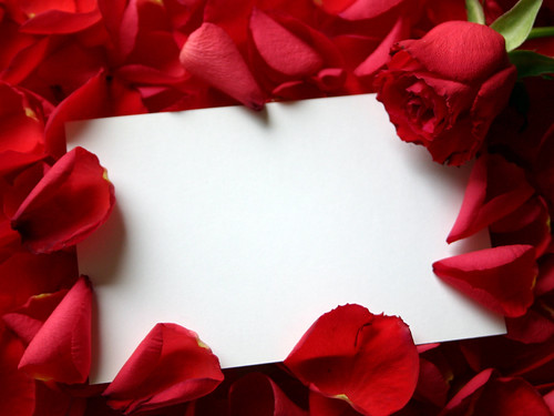 6855705255 b4750d9bb1 Celebrate Valentines Day with Symbol of Love   The RED ROSES