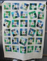 Veggie Star Scrap Quilt Bound and Quilted