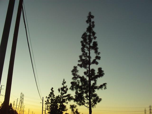SoCal At Sunset