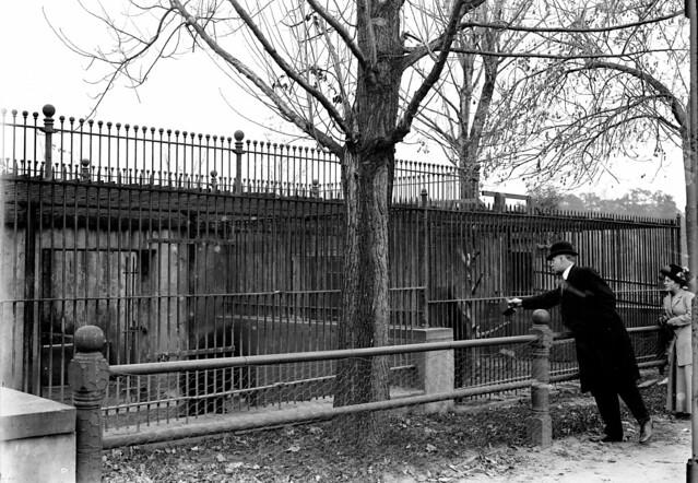 9 Cadwalader Park  Trenton  Nj 1912