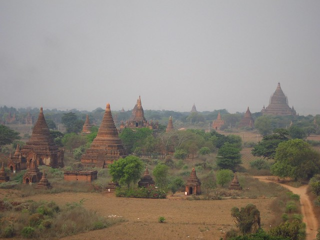 Temples as Far as the Eye Can See