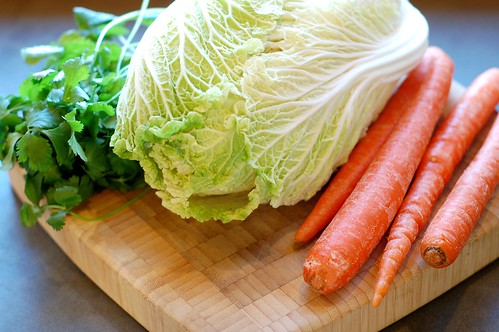 Cilantro, Napa cabbage, and carrots by Eve Fox, Garden of Eating blog, copyright 2012