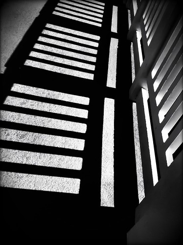 256/365- Shadows by elineart