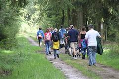 wandeltocht in het bos