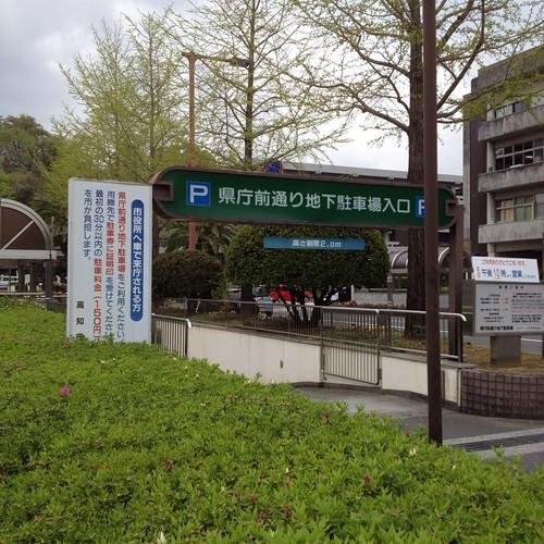 高知市役所 駐車場 by haruhiko_iyota
