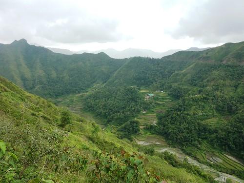 Luzon-Bangaan (80)