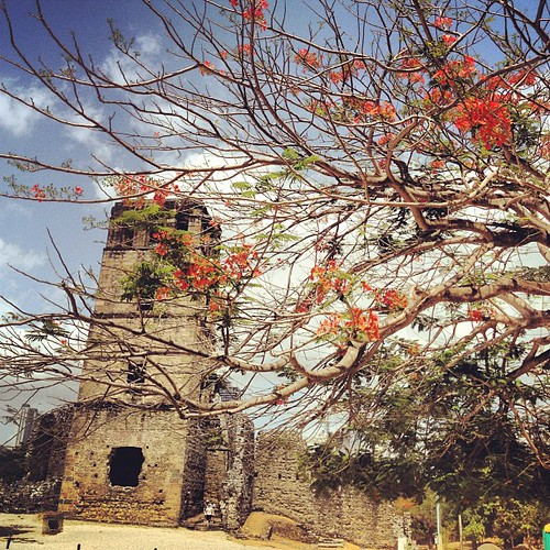 #flowers #vegetation #ruins #ruinas #panamaviejo #historical #panama #igerspanama #centralamerica