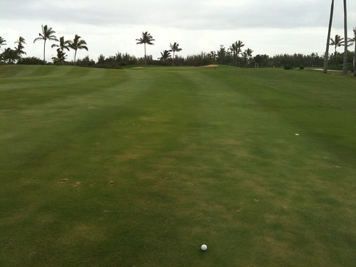 Hawaii Prince Golf Club 458
