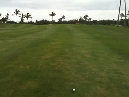 Hawaii Prince Golf Club 458