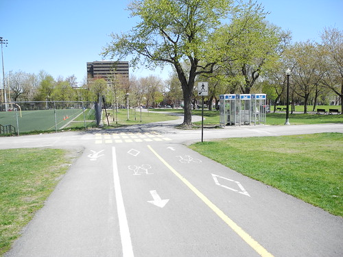 Cycle and walk space