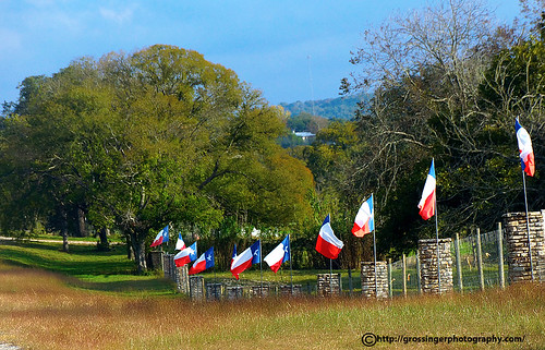 texas flags displayed proudly