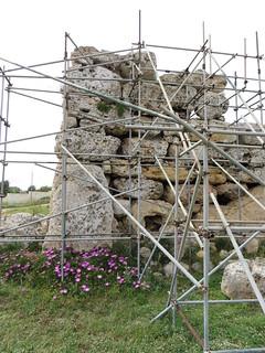 Image of Ggantija Temples. ruins mediterranean malta neolithic gozo ggantija xaghra neolithictemple ggantijatemple