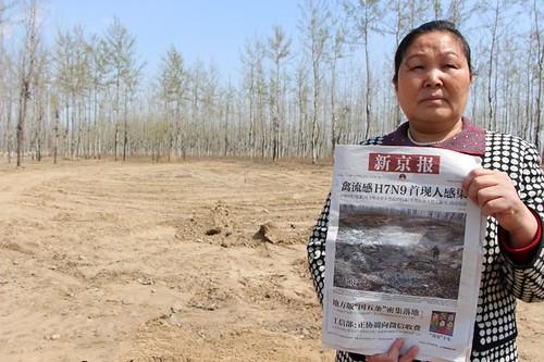 劉玉英手持刊載清理前污染現場照片的新京報頭版,與突襲清理過後的現場對比。
