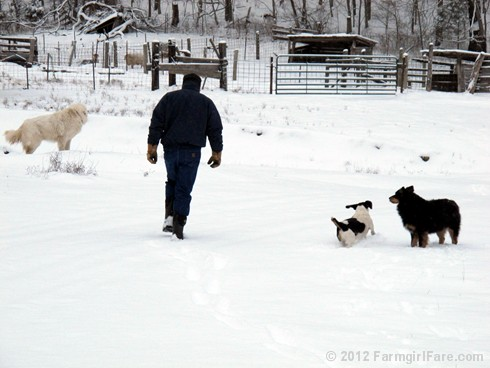 Snow dogs 5 - FarmgirlFare.com