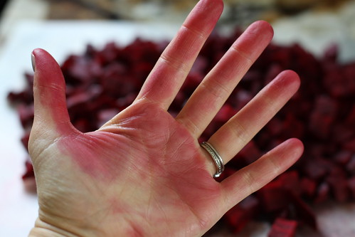 Borscht Hands
