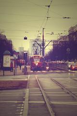 morning tram