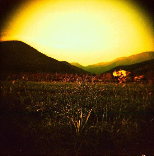 sunset camp film analog atardecer xpro procesocruzado crossprocess diana campo fields 120mm inspira