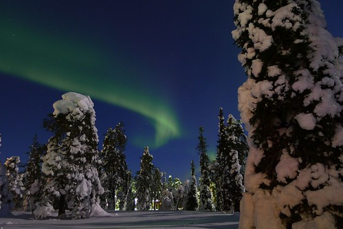 [Free Images] Nature, Trees, Aurora, Night Sky, Snow, Landscape - Finland ID:201203141200