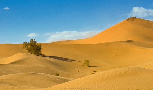 Desert Tabuk III by © Saud AL-Jethli, Photo