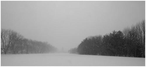Snow Storm by felixtrio