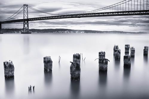 無料写真素材, 建築物・町並み, 橋, モノクロ, 風景  アメリカ合衆国