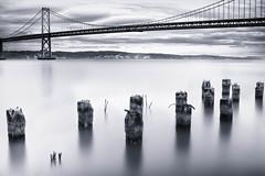 [フリー画像素材] 建築物・町並み, 橋, モノクロ, 風景 - アメリカ合衆国 ID:201203151800